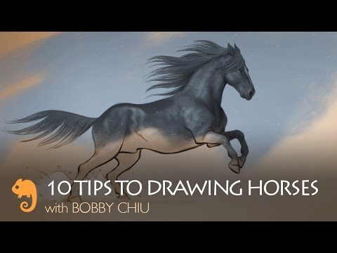 10 Tips to Drawing Horses