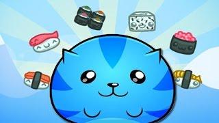 I LOVE FAT CATS   Sushi Cat