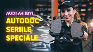Scoate Placute Frana AUDI - ghid video
