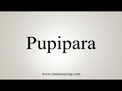 How To Pronounce Pupipara