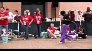 St. Louis Pet Expo Costume Contest