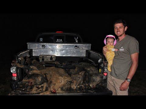 Hog Hunting: Shooting Hogs with Pulsar Night Vision