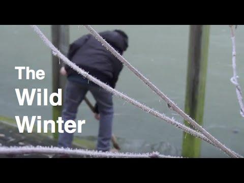 The wild winter | short movie | Delon Movies