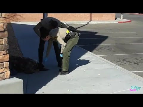 Woman's Head Hits Concrete Victorville Copwatch