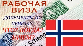 видео рабочая виза