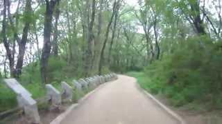自転車で天野街道を走り、天野山金剛寺へ