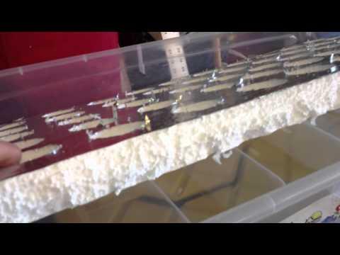 Floating Raft System- basic design