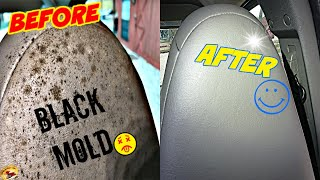 How To REMOVE BLĄCK MOLD for .54 Cents! Works for Car or Home, on Vinyl, Leather, Plastic & Rubber