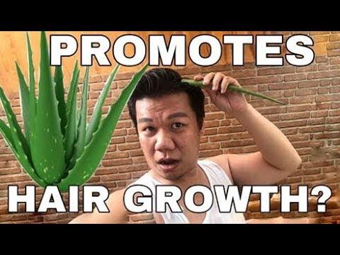 aloe-vera-for-hair-growth?-effective-ba?