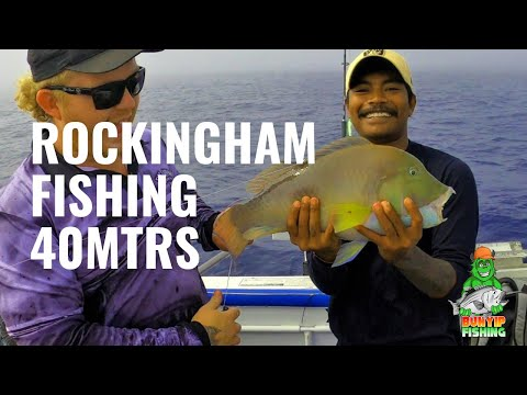 Rockingham Fishing In 40mtrs & Southwest Bank Pink Snapper, Dhu Fish, Black Ass, Kg Whiting On Jig +