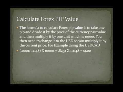 Pips forex explained