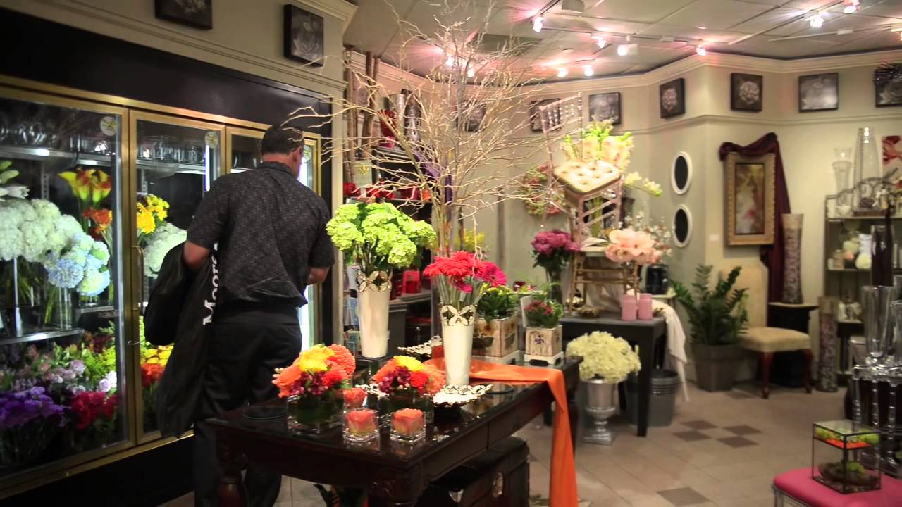 Tidy 39 S Toronto 39 S Downtown Flower Shop Youtube