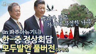 문재인 대통령과 시진핑 주석의 한반도 정세에 대한 공통된 생각은?! 한중정상회담 모두발언 및 김의겸 대변인 브리핑