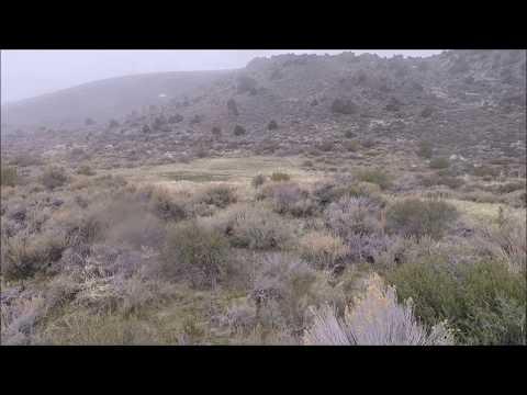 The Esmeralda Camp townsite, Mineral County, Nevada.