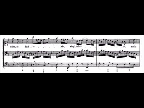 Bach - Aria (soprano): Mein glaübiges Herze (score)