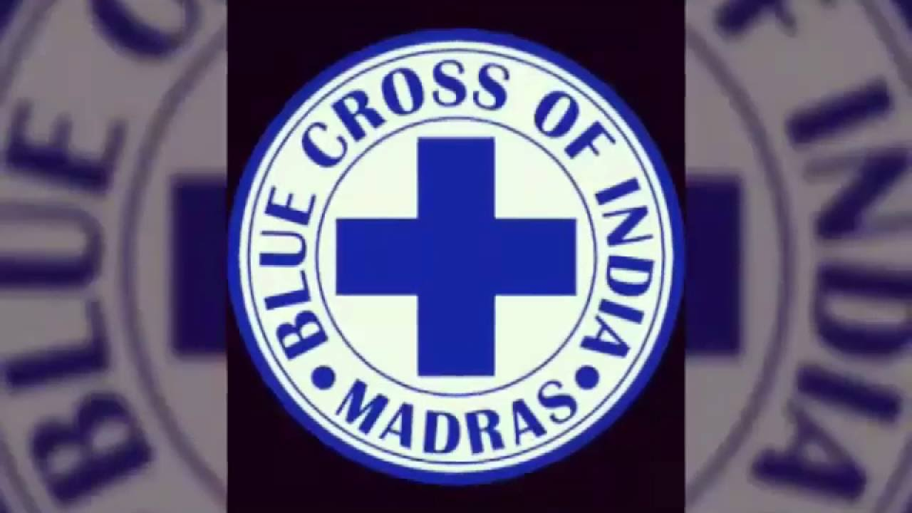 Rescue of snake by blue cross of india youtube rescue of snake by blue cross of india buycottarizona