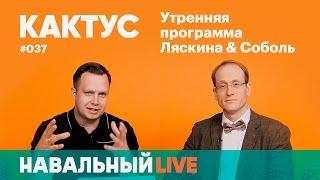 Кактус #037. Гость — Андрей Заякин, один из основателей проекта «Диссернет»