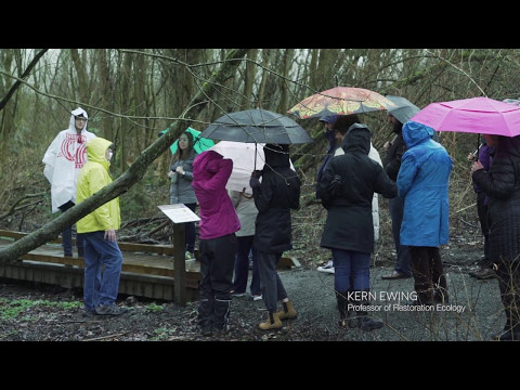 Yesler Swamp Tour 2017 by Seattle Architecture Foundation