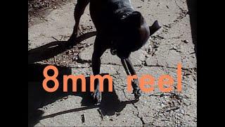 8mm vhs film reel 2020 - humantrip