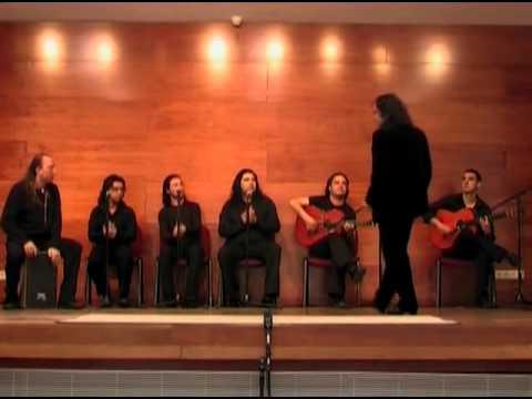 Noches de Flamenco - Noche gitana