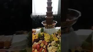 видео шоколадный фонтан на банкет