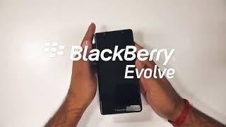 Blackberry evolve review