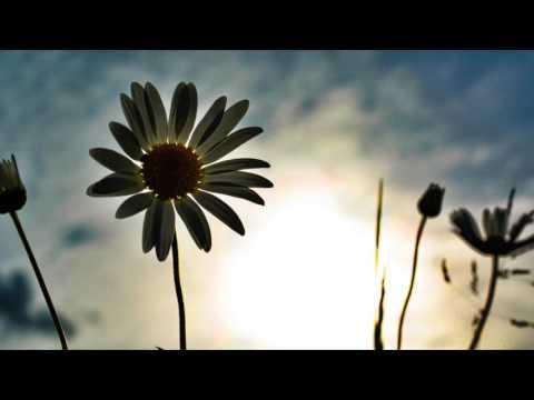 """Marian Hill """"Down"""" [Black Caviar Remix]"""