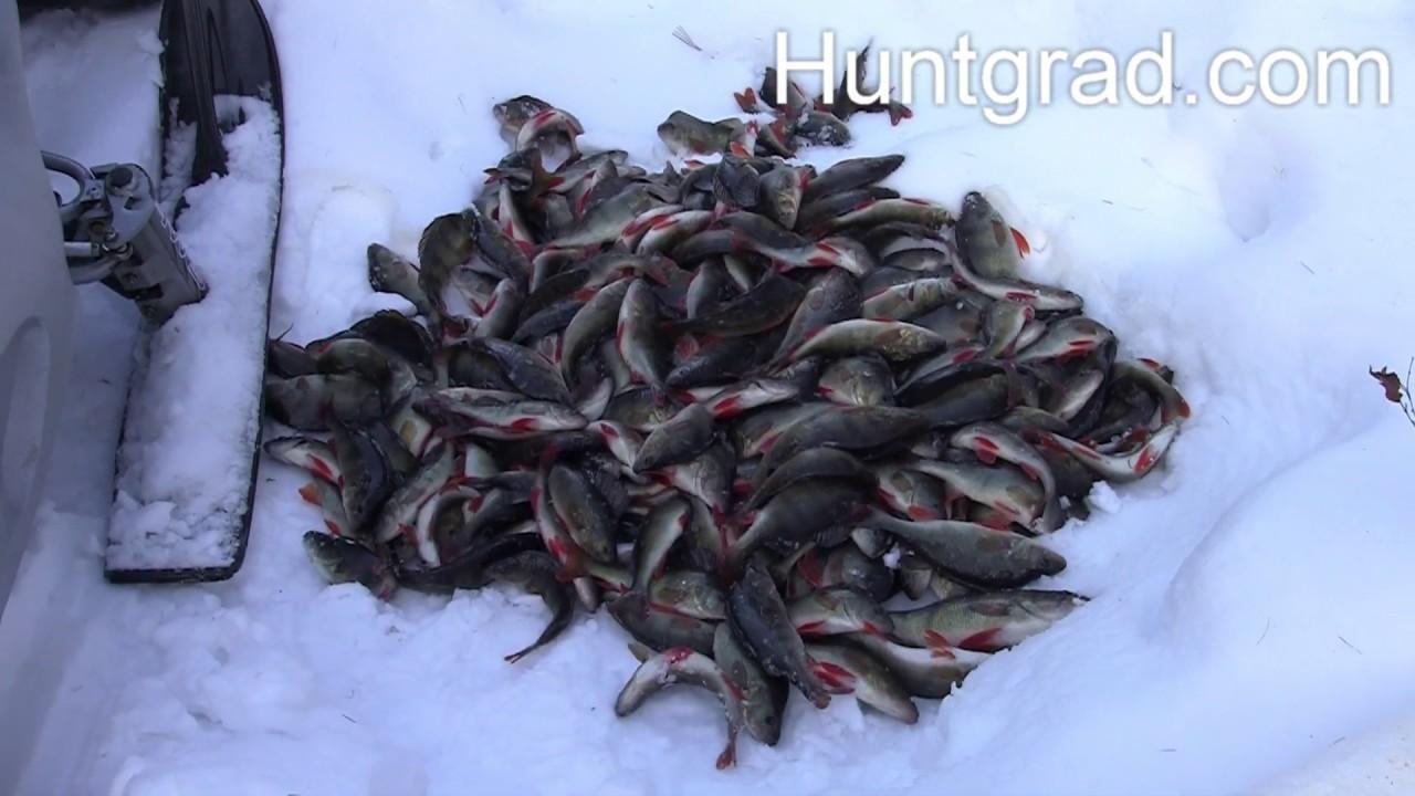 зимняя рыбалка 2020