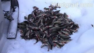 Зимняя рыбалка в ХМАО 2020