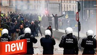 Politik | Protest gegen UN-Migrationspakt | Gewalttätige Ausschreitungen in Brüssel