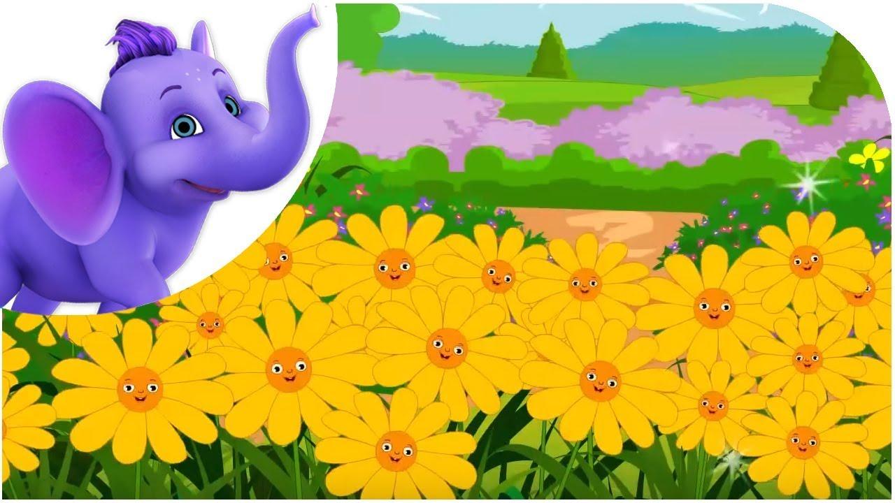 All Flowers are Waking with Lyrics - Nursery Rhyme