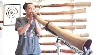 Jesse Lethbridge Didgeridoo key of C# (#4057)