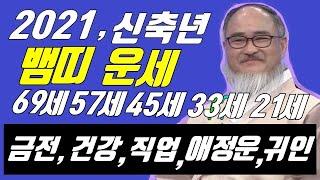 2021년 뱀띠운세 신축년 뱀띠 신년운세대박나이,행운나이?!