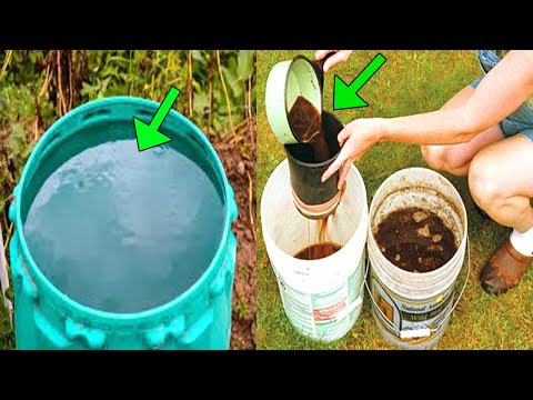 GROW YOUR OWN PLANTS like crazy with This Compost Tea! BOOST PLANTS HEALTH & FIGHT DISEASE AND PEST