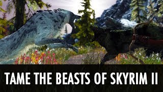 Skyrim Mod: Tame the Beasts of Skyrim II