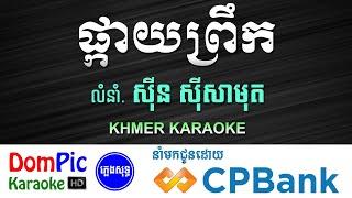 ផ្កាយព្រឹក ស៊ីន ស៊ីសាមុត ភ្លេងសុទ្ធ - Pkay Prek Sin Sisamuth - DomPic Karaoke