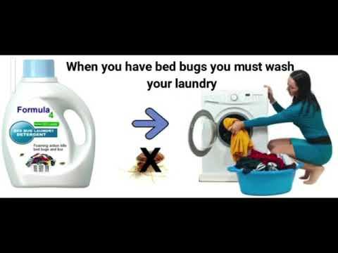 formula-4-bed-bug-detergent
