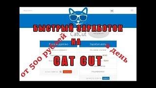 Бот для CatCut. 500 рублей в день!