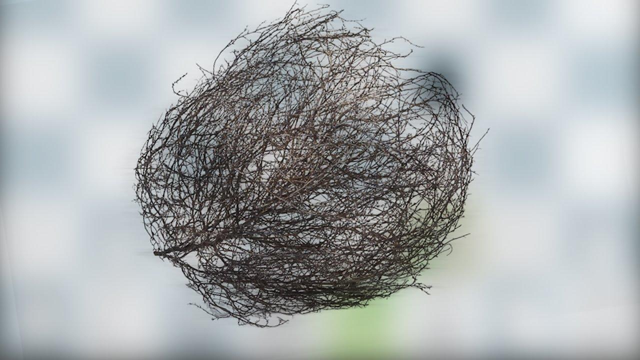 My First Tumbleweed Variation