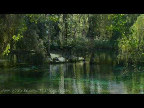 Bruce Springsteen - The River (English lyrics translation - traduzione)