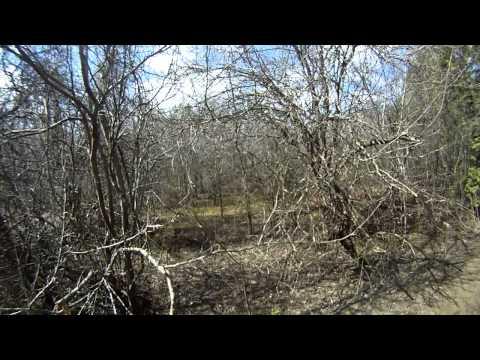 Newtonville Trail Exploring