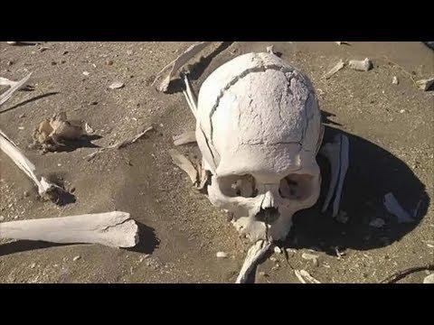 Descubren huesos humanos de 3 mil años en Puerto Madryn