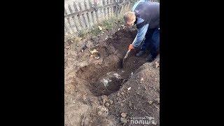 Трупи на подвір`ї розкопали у Кривому Розі: кримінальний дует затримано