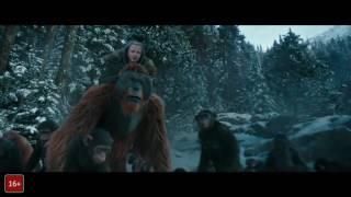 Смотреть фильм Планета Обезьян Война! Онлайн