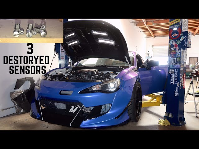 Finding out whats been killing my brz