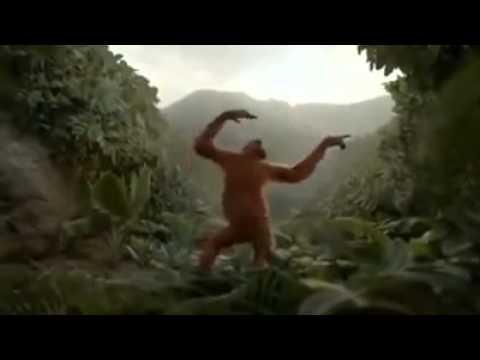 KATHADIKUDDU KATHADIKUDDU #Monkey #Dance #Funny