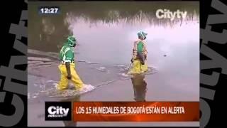 Los 15 humedales de Bogotá están en alerta   CityTv   CityNoticias 12  Febrero 2