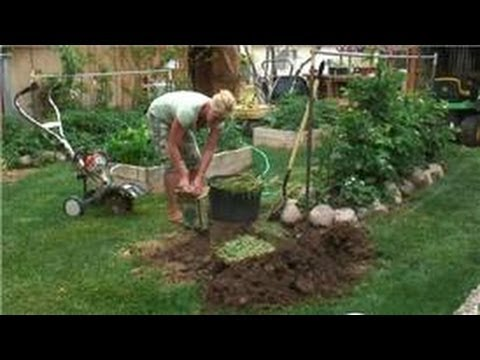 Preparing Your Garden How to Make a Home Compost Pit YouTube