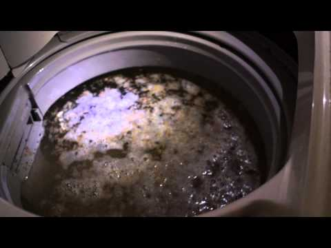 Cleaning 13-yr old washing machine with sodium percarbonate (Oxi Clean)