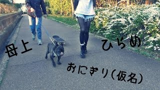 母上と弾丸旅行のブログ☛http://ameblo.jp/bu-tye/entry-12218173990.ht...